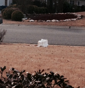 RIP Snowman, gunned down by the glorious thaw.